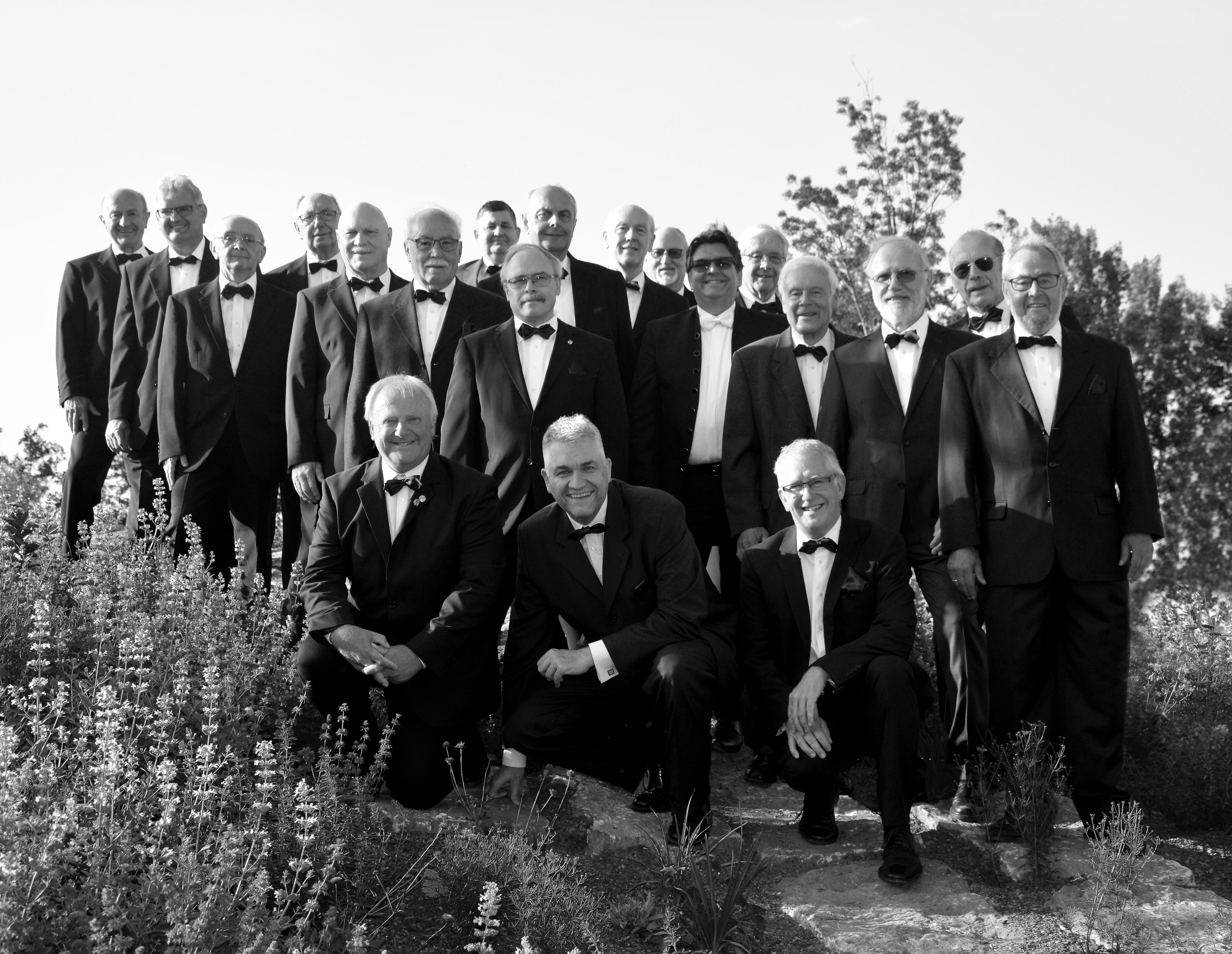 Die Akiven des Gesangverein Frohsinn Alzenau e.V. im Jahre 2010.