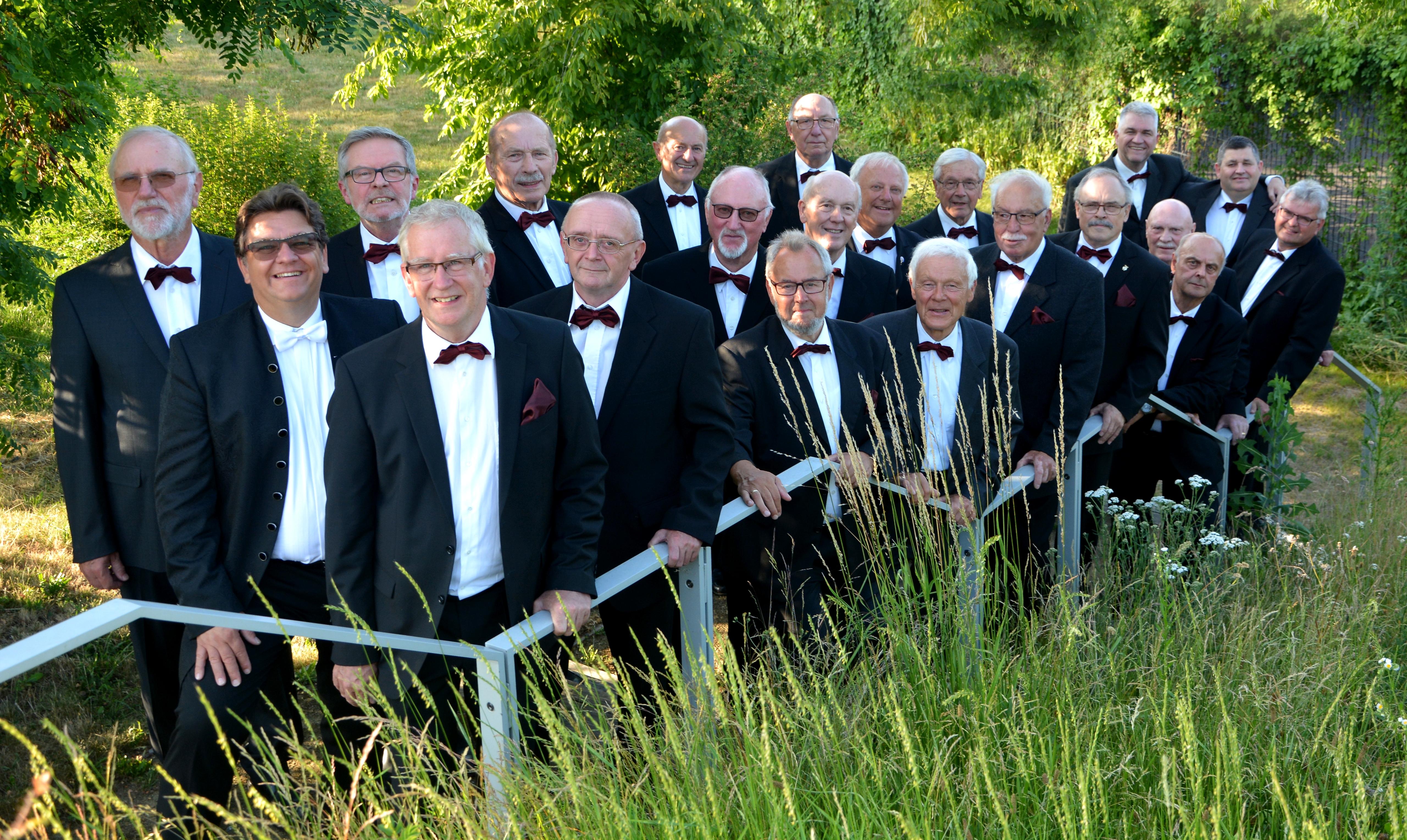 Der Männerchor im Jahre 2010.